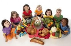 Scoala de Nutritie
